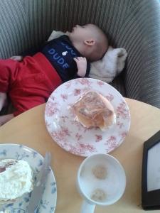 Mr Baby nods off during afternoon tea in the Victorian Winter Garden.