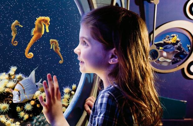 Visita 3-Palma-Aquarium