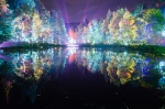 Enchanted Forest night 1
