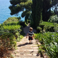 Foreign Tots Travel