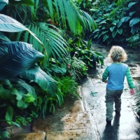 Top Things to Do in Aberdeen City with Kids