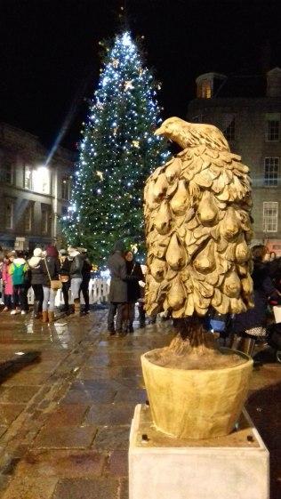 partridge-and-tree-lit