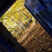 What Lurks Behind the Blue Door? Edzell Adventures