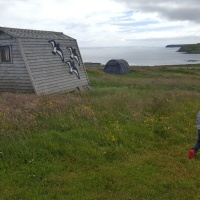 Down on the Farm: Glamping, Camping & Self-Catering on Wheems Organic Farm, Orkney